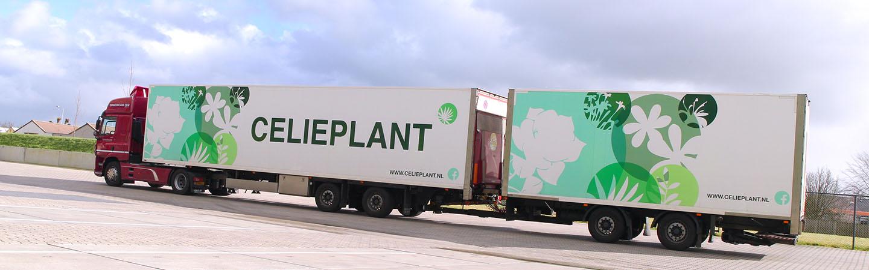 De vrachtwagens van Celieplant