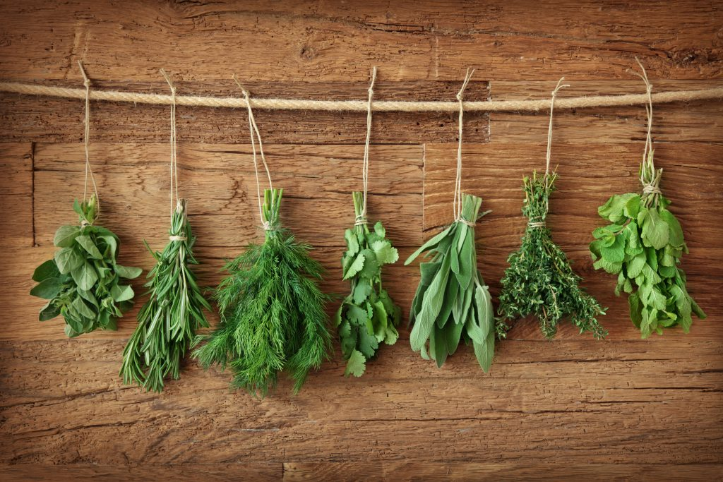 Fresh herbs hanging from a rope on a wooden backdrop